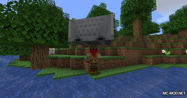 Move Minecarts mod for Minecraft (5)