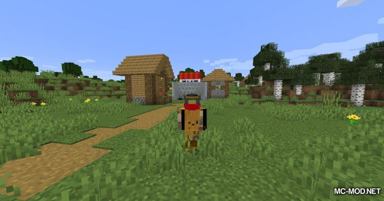 Move Minecarts mod for Minecraft (8)