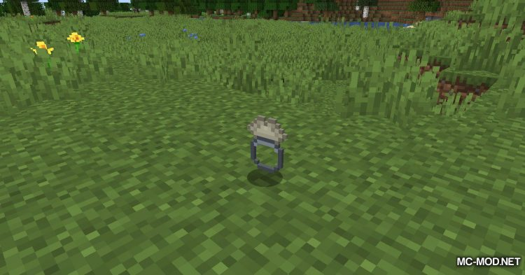 Ring of Growth mod for Minecraft (3)