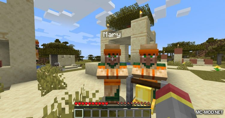 Villager Names mod for Minecraft (4)