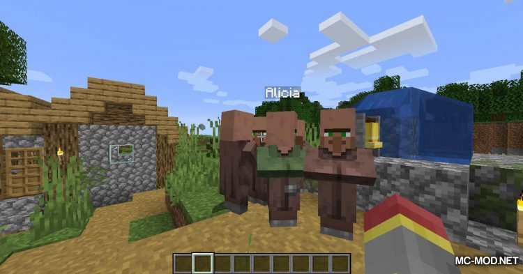 Villager Names mod for Minecraft (9)