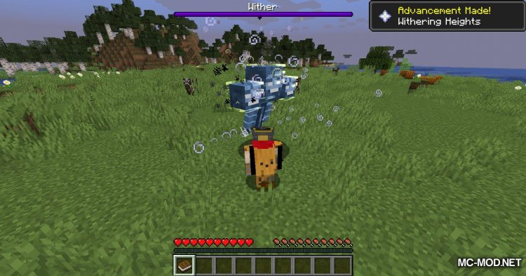 Catch Everything In Book mod for Minecraft (12)