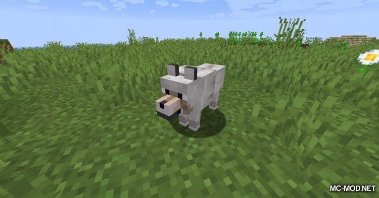 Collar Catcher mod for Minecraft (2)