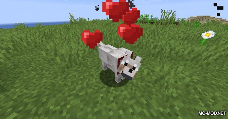 Collar Catcher mod for Minecraft (3)