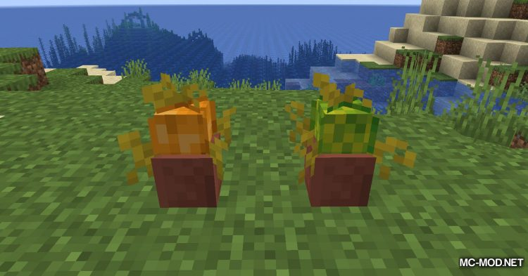 Florist mod for Minecraft (7)