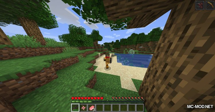 FunItems Mod mod for Minecraft (10)