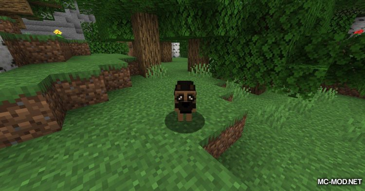 More Dogs mod for Minecraft (1)
