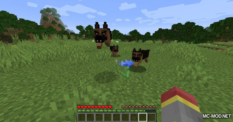 More Dogs mod for Minecraft (12)
