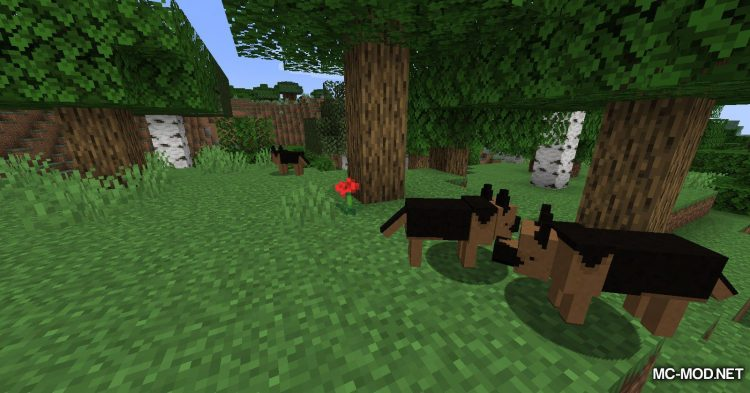 More Dogs mod for Minecraft (2)