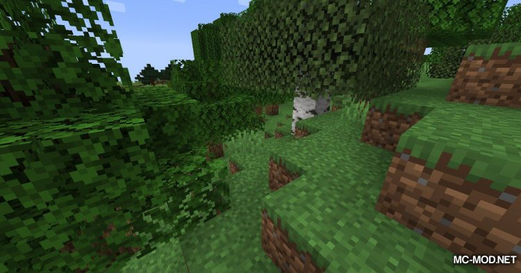 Northern Compass mod for Minecraft (3)