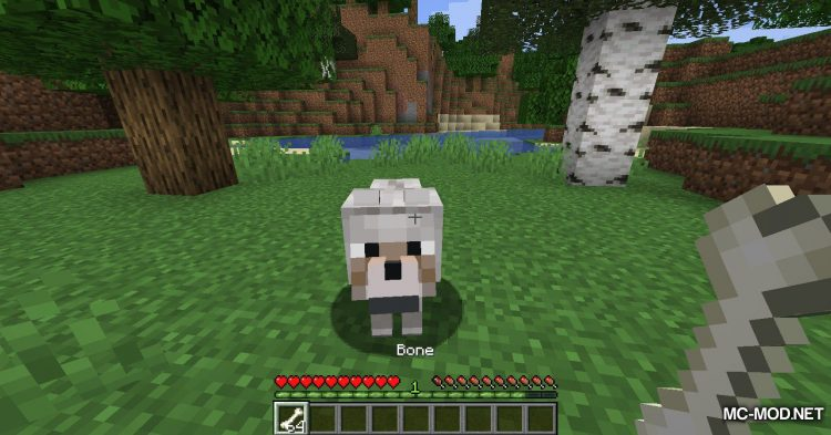 Obfuscate mod for Minecraft (4)