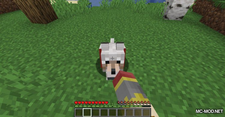 Obfuscate mod for Minecraft (6)