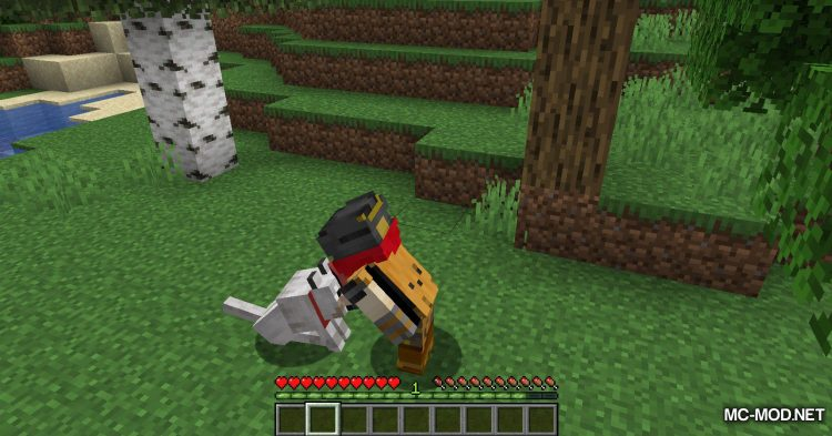 Obfuscate mod for Minecraft (7)