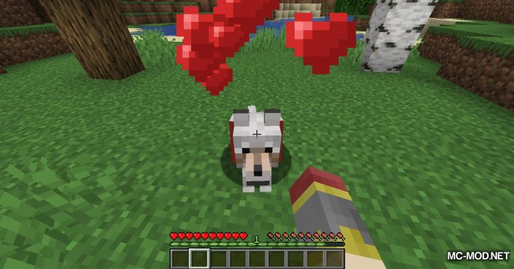 Obfuscate mod for Minecraft (9)