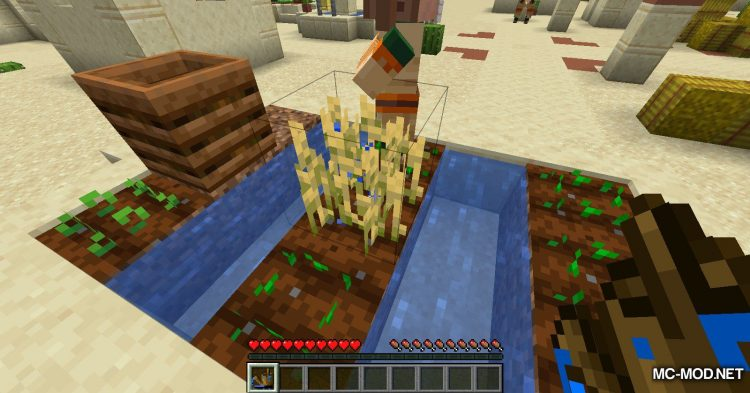 Watercan mod for Minecraft (5)