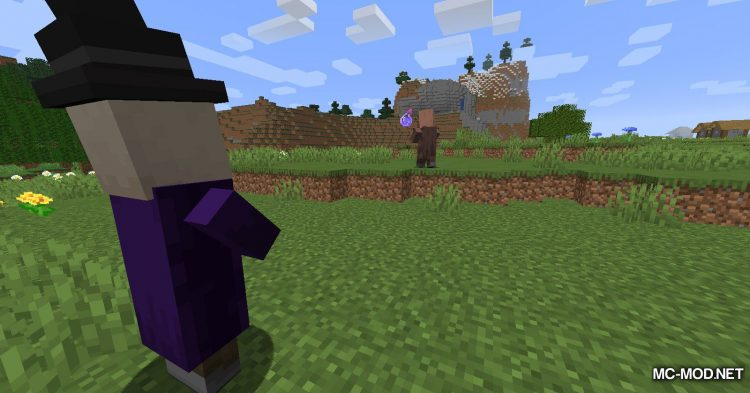 All Mobs Attack Villagers mod for Minecraft (10)