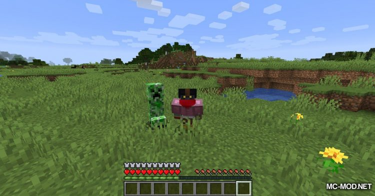 Armor Disguise mod for Minecraft (8)
