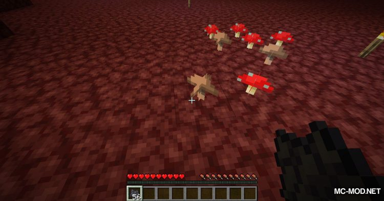 Better Wither Skeletons mod for Minecraft (10)