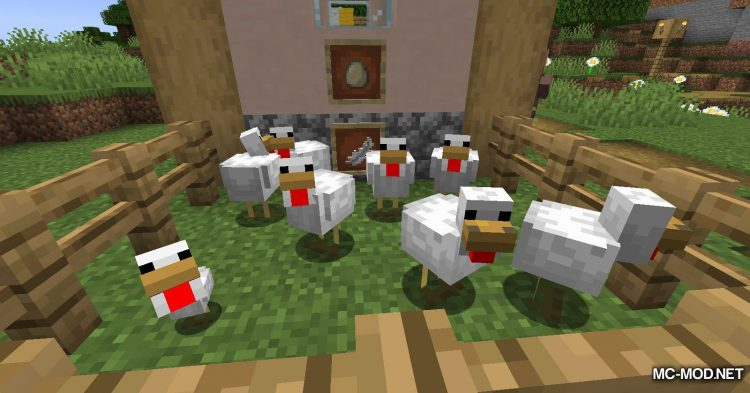 Chicken Feathers mod for Minecraft (5)