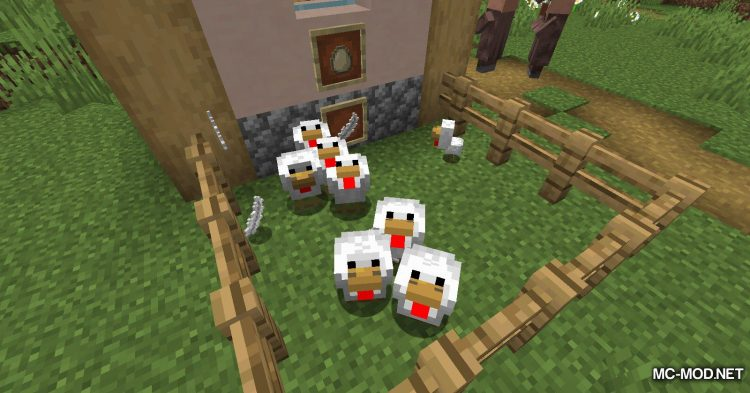 Chicken Feathers mod for Minecraft (6)