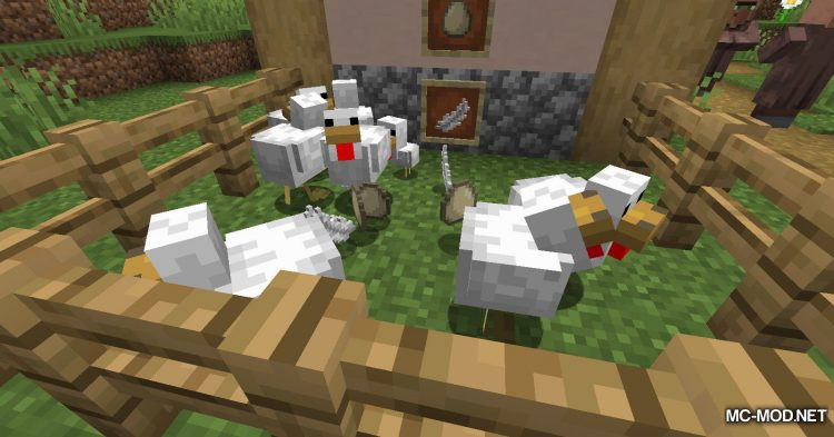 Chicken Feathers mod for Minecraft (7)