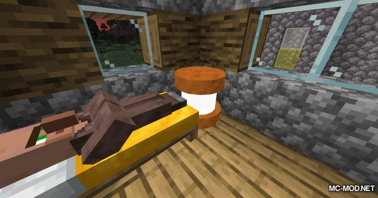 Exotic Blocks mod for Minecraft (1)
