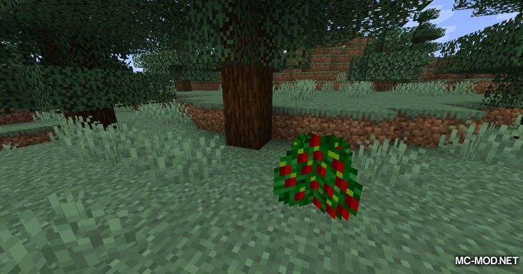 Better Berries mod for Minecraft (1)