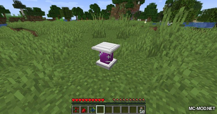 Better Berries mod for Minecraft (14)