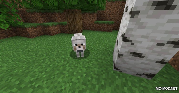 DogTags mod for Minecraft (2)