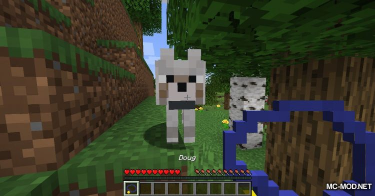 DogTags mod for Minecraft (3)