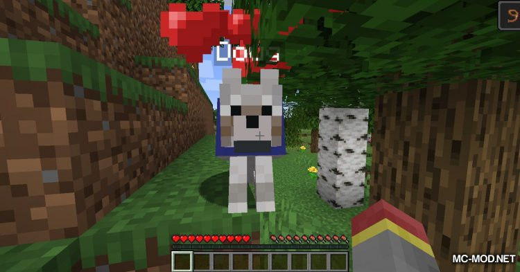 DogTags mod for Minecraft (4)