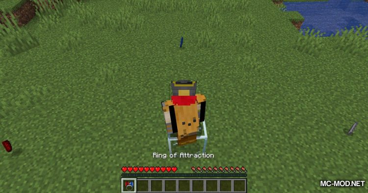 Ring of Attraction mod for Minecraft (11)