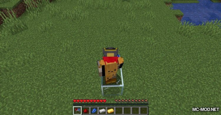 Ring of Attraction mod for Minecraft (13)