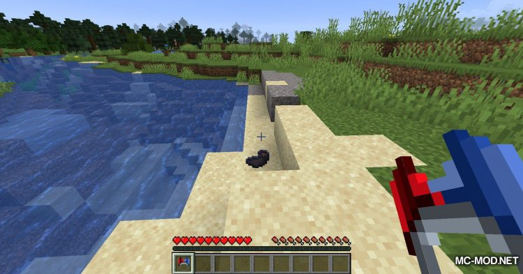 Ring of Attraction mod for Minecraft (7)