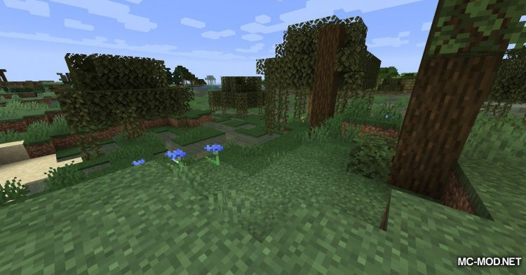 The Biome Overhaul mod for Minecraft (10)