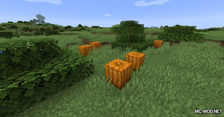 The Biome Overhaul mod for Minecraft (9)