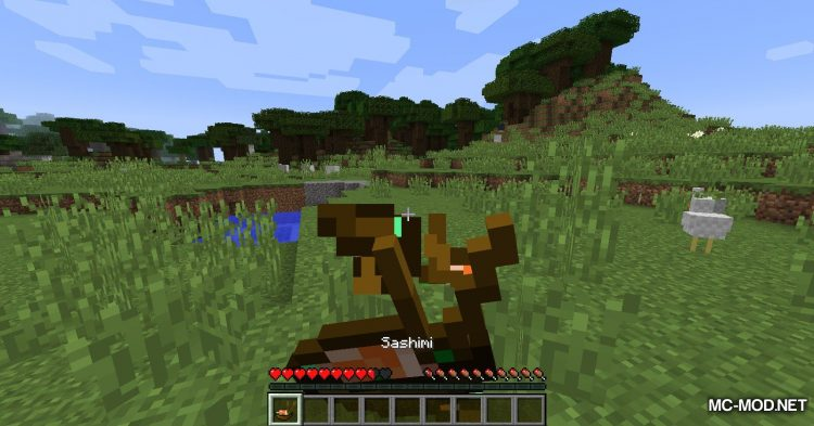 CookieCore mod for Minecraft (8)
