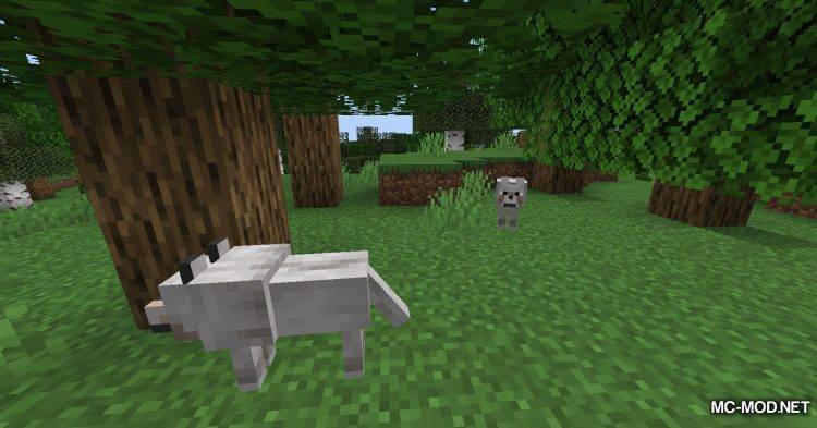 Enchanted Wolves mod for Minecraft (1)