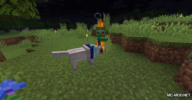 Enchanted Wolves mod for Minecraft (10)