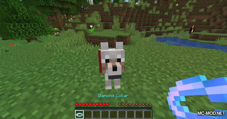 Enchanted Wolves mod for Minecraft (7)