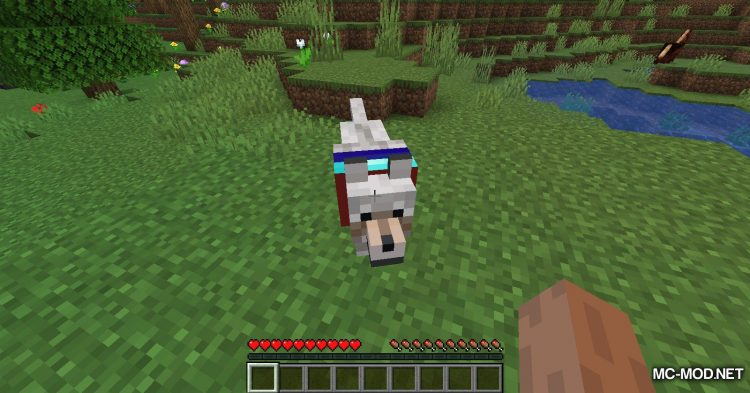 Enchanted Wolves mod for Minecraft (8)