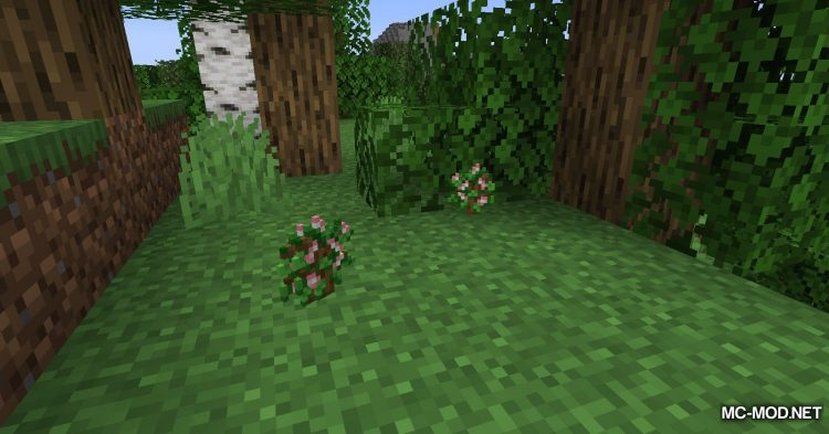 Fruit Trees mod for Minecraft (10)