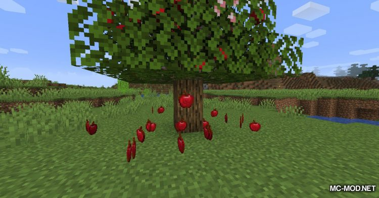 Fruit Trees mod for Minecraft (11)