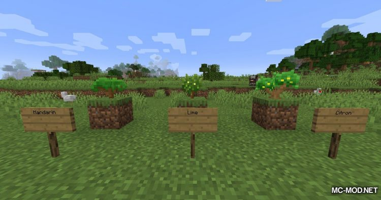 Fruit Trees mod for Minecraft (3)