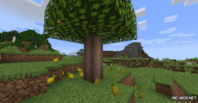 Fruit Trees mod for Minecraft (8)