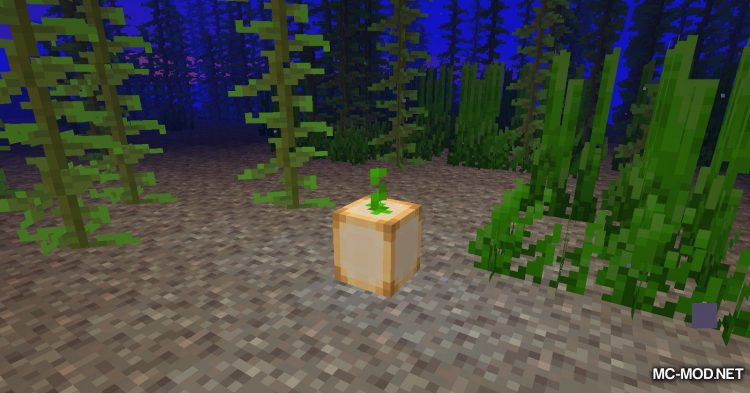 Lightest Lamps mod for Minecraft (6)
