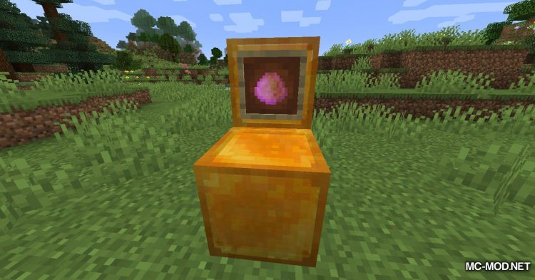 The Bees Knees mod for Minecraft (13)