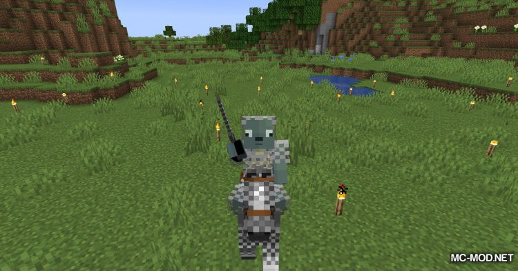Chained mod for Minecraft (8)