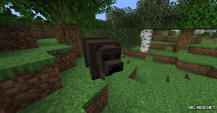 Misc Additions mod for Minecraft (1)
