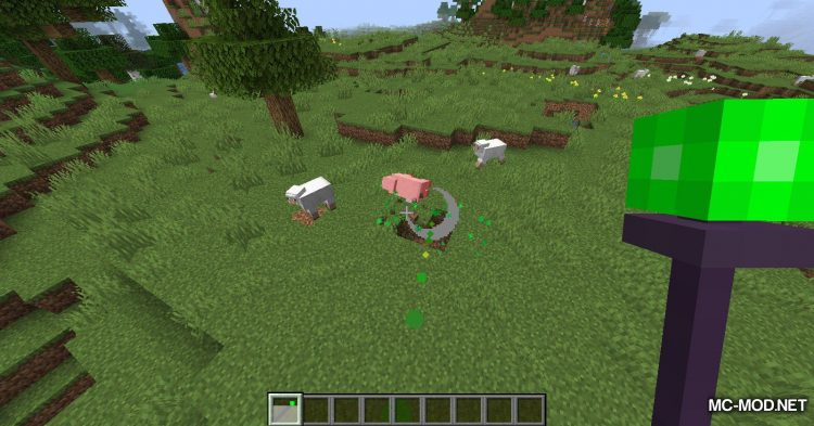 Misc Additions mod for Minecraft (8)